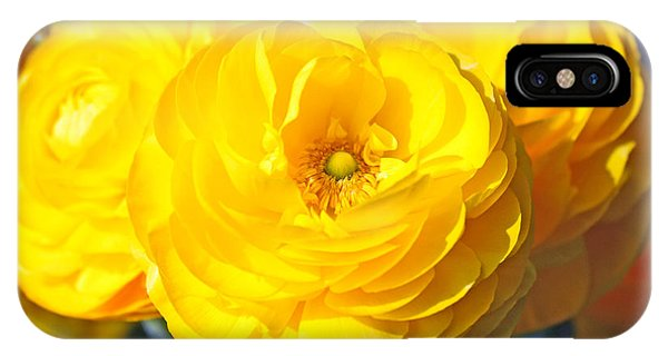 iPhone Case - Yellow Peonies by Kelly Holm