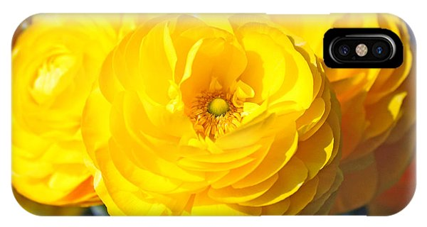 Yellow Peonies IPhone Case