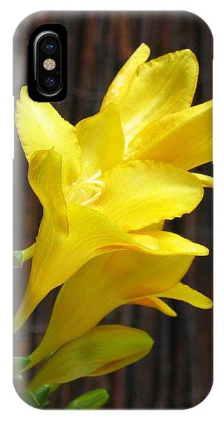 Yellow Petals IPhone Case