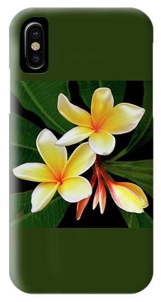 Yellow Plumeria IPhone Case