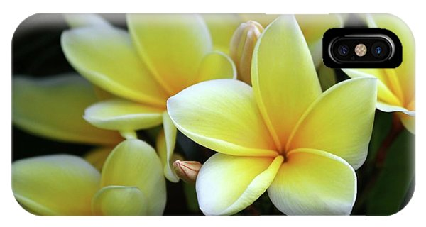 Yellow Plumeria Cascade IPhone Case