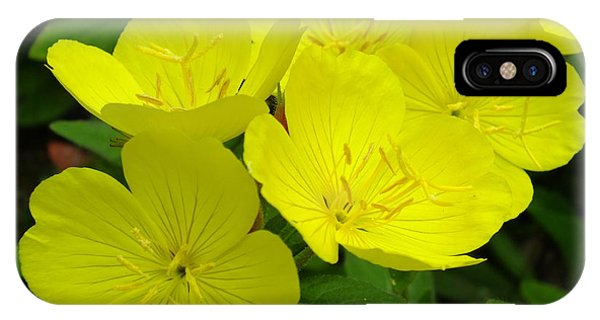 Yellow Primrose IPhone Case