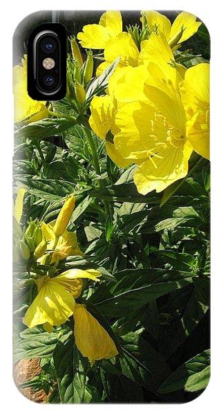 Yellow Primroses IPhone Case