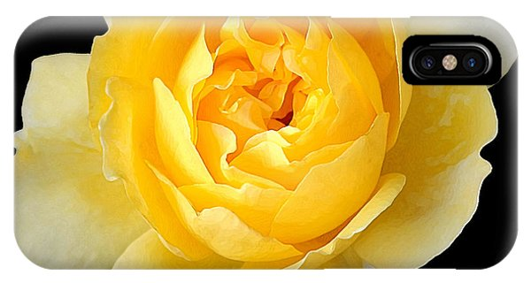 Yellow Rose Phone Case by CarolLMiller Photography