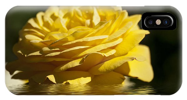 Yellow Rose Flood IPhone Case