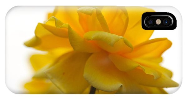 Yellow Rose Garden IPhone Case