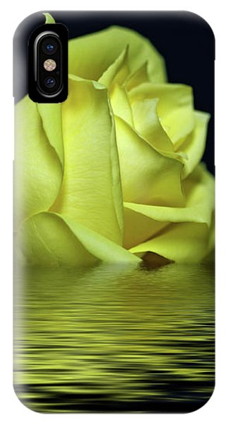 Yellow Rose II IPhone Case