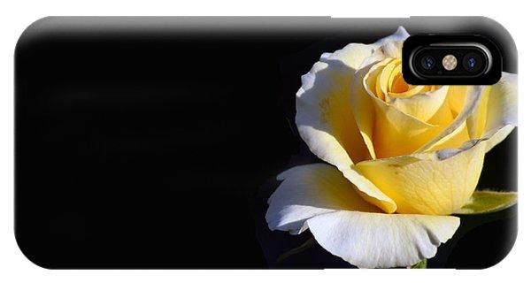Yellow Rose On Black IPhone Case