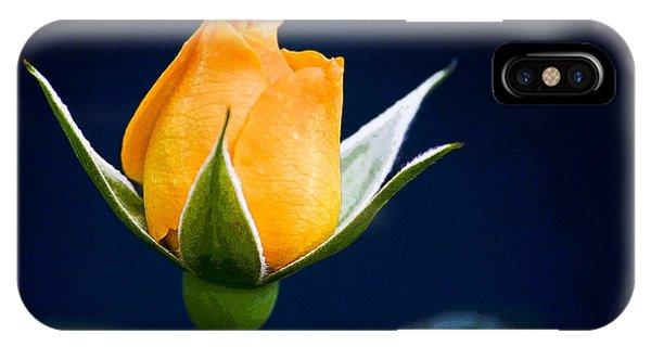 Yellow Rosebud IPhone Case