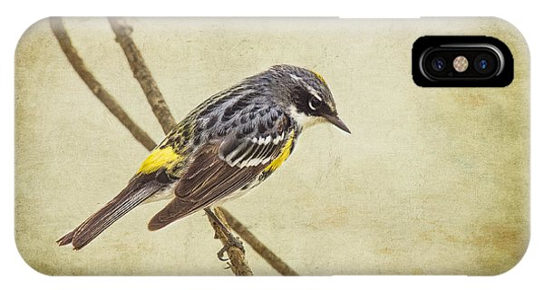Yellow-rumped Warbler 2 Phone Case by Jeff Swanson