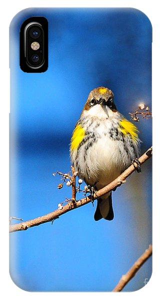Yellow-rumped Warbler IPhone Case