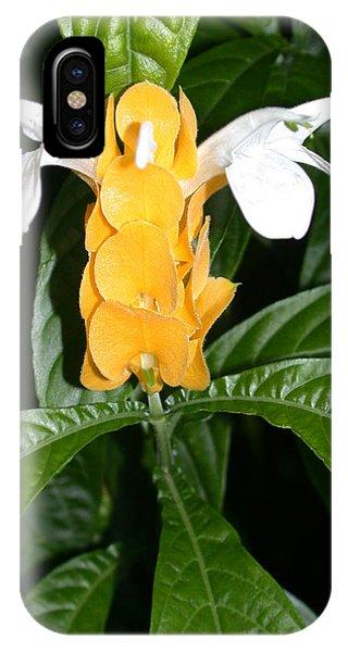Yellow Shrimp Plant IPhone Case