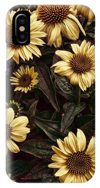 Yellow Sombrero Coneflower IPhone Case
