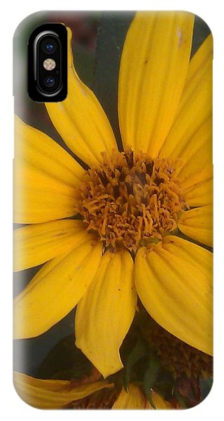 Yellow Sunshine Phone Case by Kim Martin