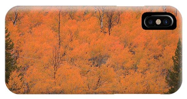 Yellow Teton Autumn IPhone Case
