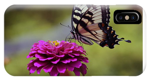 Yellow Tiger Swallowtail Butterfly IPhone Case