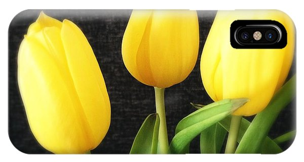 Florals iPhone Case - Yellow Tulips Black Background by Matthias Hauser