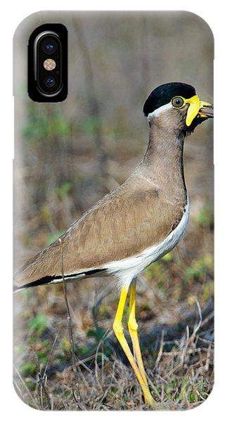 Yellow-wattled Lapwing Vanellus IPhone Case