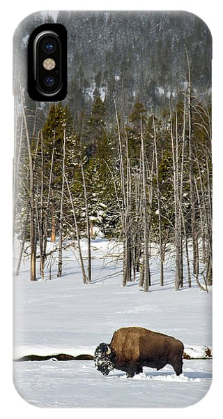 Yellowstone Winter IPhone Case