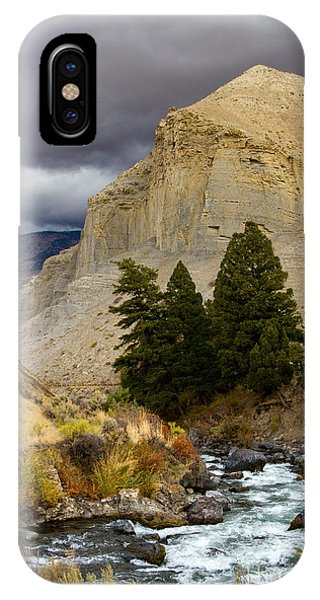 Yellowstone's Beauty IPhone Case