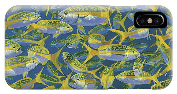 West Bay iPhone Case - Yellowtail Frenzy In0023 by Carey Chen