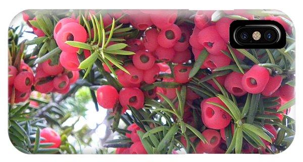 Yewberries Phone Case by Laura Yamada