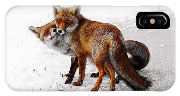 Cold Day iPhone Case - Yin Yang _ Red Fox Love by Roeselien Raimond