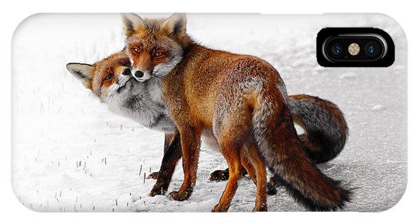 Yin Yang _ Red Fox Love IPhone Case