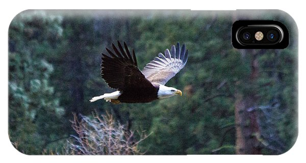 Yosemite Bald Eagle IPhone Case