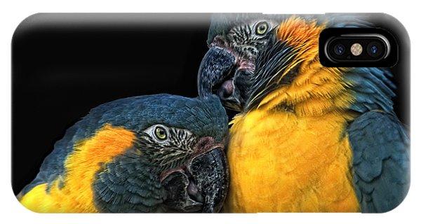 Macaw iPhone Case - You Sexy Thing by Joachim G Pinkawa