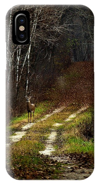 Young Buck And Autumn IPhone Case