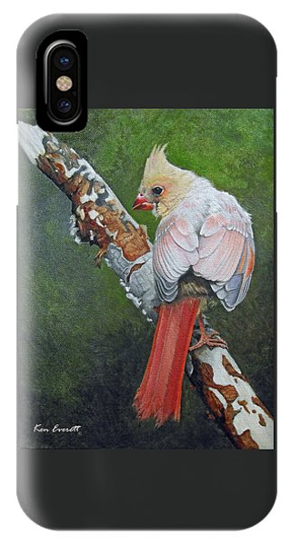 Young Cardinal  IPhone Case