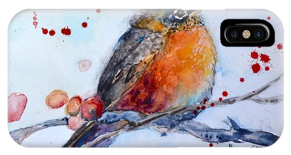 Young Robin IPhone Case