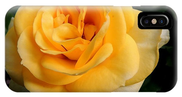 Your Flower Toniight IPhone Case