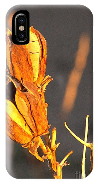 Yucca Pod IPhone Case