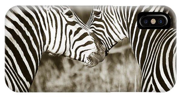 Zebra Affection IPhone Case