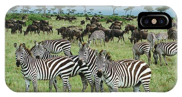 Mp iPhone Case - Zebra And Wildebeest Grazing Masai Mara by Yva Momatiuk and John Eastcott