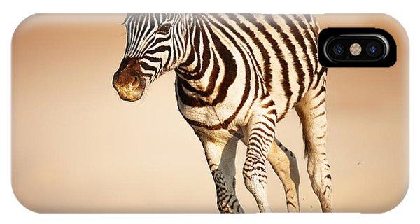 Mammal iPhone Case - Zebra Calf Running by Johan Swanepoel