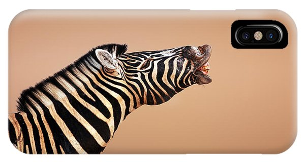 Close-up iPhone Case - Zebra Calling by Johan Swanepoel