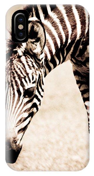 Zebra Foal Sepia Tones IPhone Case