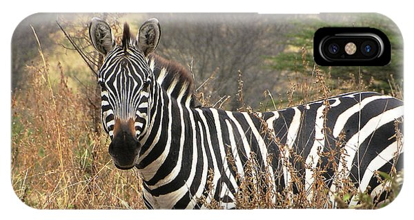 IPhone Case featuring the photograph Zebra In Serengeti by Nature and Wildlife Photography