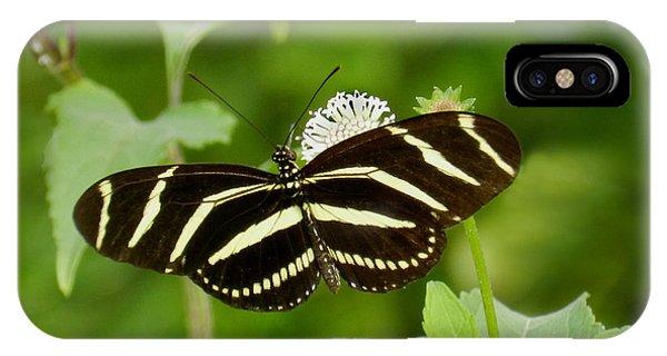 Zebra Longwing IPhone Case