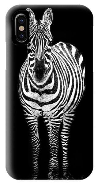 Zebra iPhone Case - Zebra by Paul Neville