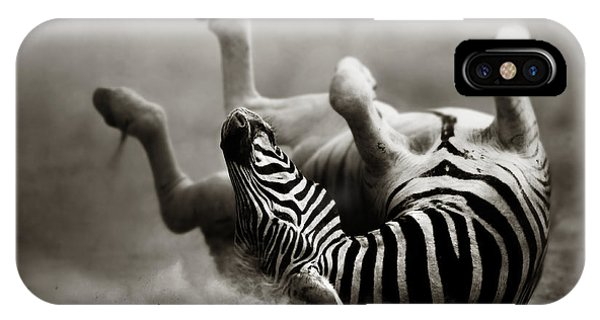 Safari iPhone Case - Zebra Rolling by Johan Swanepoel