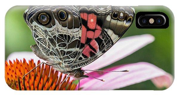 Butterfly Feeding IPhone Case