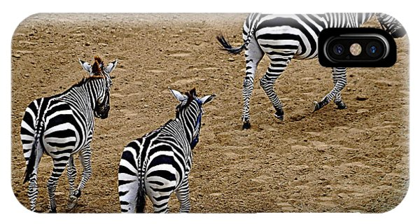 Zebra Tails IPhone Case
