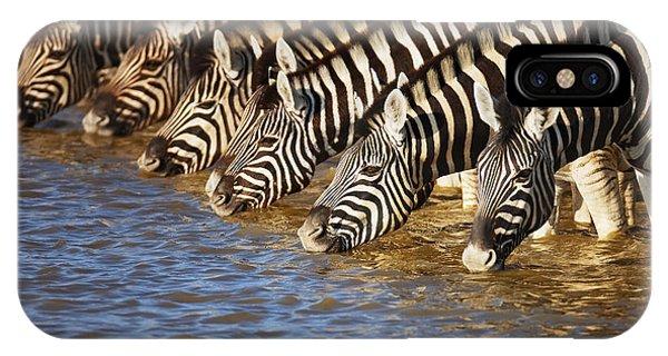 Mammal iPhone Case - Zebras Drinking by Johan Swanepoel