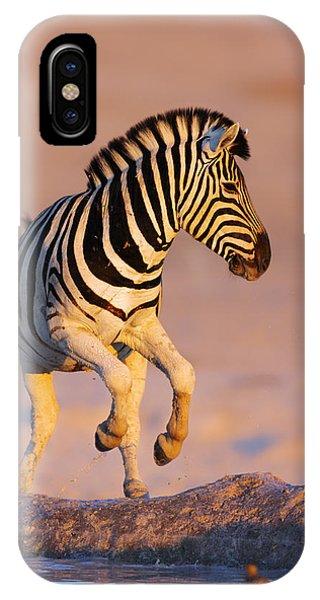 Mammal iPhone Case - Zebras Jump From Waterhole by Johan Swanepoel