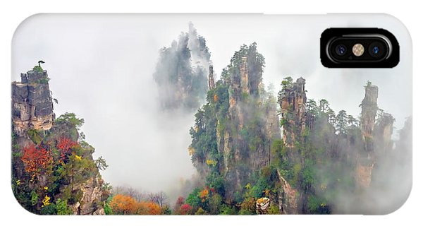 Zhang Jia Jie Fall Color IPhone Case