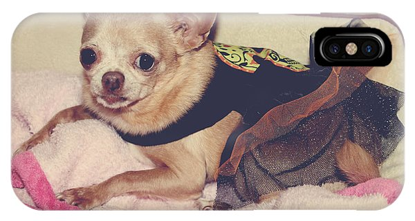 Chihuahua iPhone Case - Zoe's Halloween Dress by Laurie Search